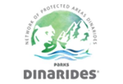 Динариди